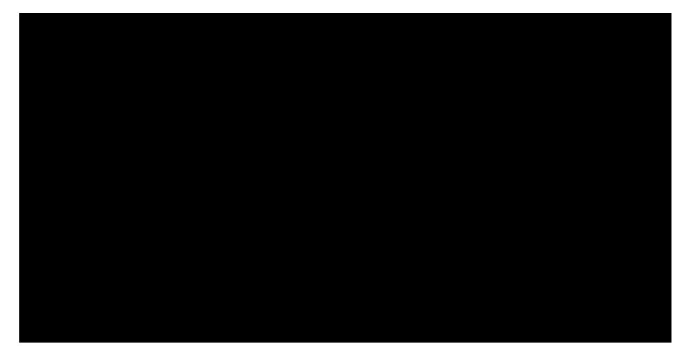 robus intelligence logo